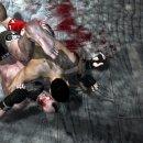 La Soluzione di Supremacy MMA