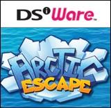 Arctic Escape per Nintendo DSi