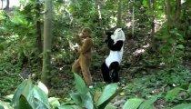 Bear Bounce - Trailer