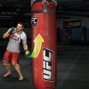 UFC Personal Trainer - Trucchi