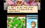 La soluzione di Harvest Moon: The Tale of Two Towns - Soluzione