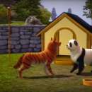 The Sims 3: Animali & Co. - Video e immagini per cani e gatti