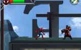 Due ragni nel DS - Recensione