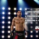 THQ conferma che stava sviluppando un altro UFC