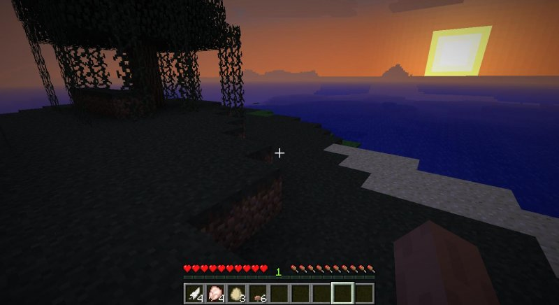 Sopravvivere a Minecraft