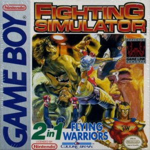 Fighting Simulator: 2-in-1 Flying Warriors per Game Boy