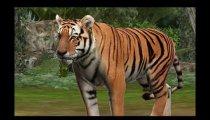 Zoo Resort 3D  - Trailer #2