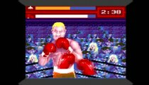 Evander 'Real Deal' Holyfield's Boxing - Gameplay
