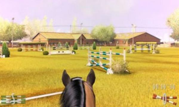 My Horse Me Ds Multiplayerit