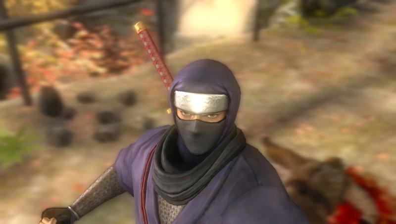 Roba da ninja