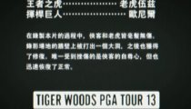 Tiger Woods PGA Tour 13 - Duel of the Masters