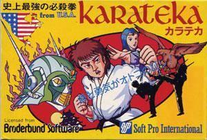 Karateka per Nintendo Entertainment System