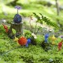 C'è vita nel giardino