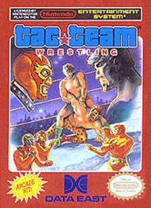 Tag Team Wrestling per Nintendo Entertainment System