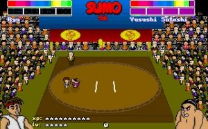 Super Sumo Wrestling 2002 per PC MS-DOS