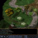 Baldur's Gate: Enhanced Edition e il problema degli assets originali