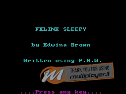 Feline Sleepy per Sinclair ZX Spectrum