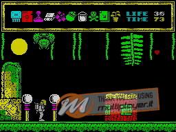 Termination per Sinclair ZX Spectrum