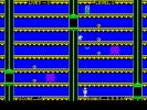 Raiders of the Lost Tomb per Sinclair ZX Spectrum