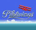 Pilotwings per Nintendo Wii U