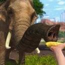 Gli animali di Xbox One