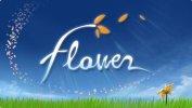 Flower per PlayStation Vita