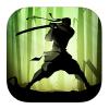 Shadow Fight 2 per iPad