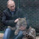 Gli sviluppatori di Areal affermano di aver ricevuto una lettera da Vladimir Putin che vorrebbe vedere il gioco