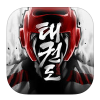 The Taekwondo Game - Global Tournament per Android