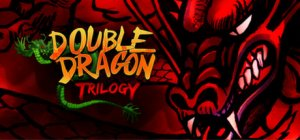 Double Dragon Trilogy per PC Windows