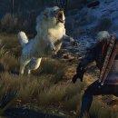 CD Projekt sta indagando sui problemi che affliggono The Witcher 3 su PlayStation 4 Pro dopo l'ultimo update