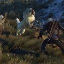 The Witcher 3: Wild Hunt, un piccolo assaggio di Blood & Wine dalla GDC 2016
