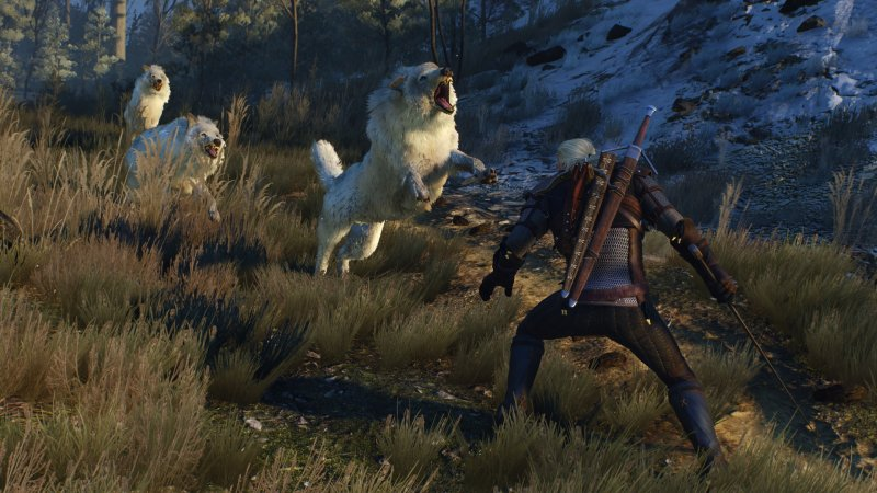 Spuntano possibili dettagli inediti su The Witcher 3: Blood and Wine