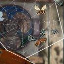 Spider: Rite of the Shrouded Moon ha finalmente una data d'uscita su PC e iOS