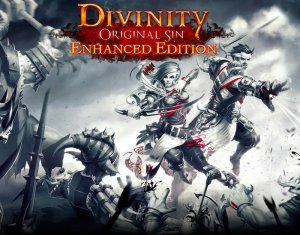 Divinity: Original Sin Enhanced Edition per PC Windows