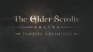 The Elder Scrolls Online: Tamriel Unlimited - Orsinium per PlayStation 4