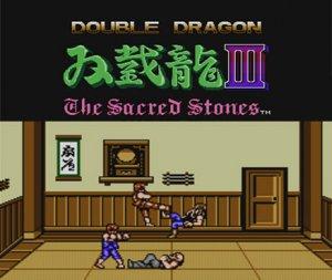 Double Dragon III: The Rosetta Stone per Nintendo Wii U