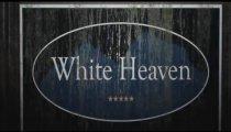 White Heaven - Nuovo teaser trailer