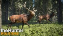 theHunter: Call of the Wild - Trailer gameplay