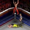 Fire Pro Wrestling World uscirà su PlayStation 4 la prossima estate