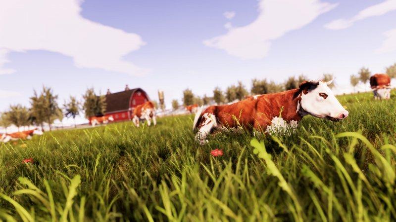 La recensione di Real Farm