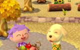 Animal Crossing: Pocket Camp è già disponibile su App Store e Google Play - Notizia