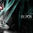 Life of Black Tiger - Il trailer di gioco