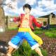 Giochi PS4, One Piece: World Seeker, The Division 2 e tutti i titoli della settimana dell'11 marzo 2019