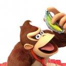 Donkey Kong: Kelbaugh, i Retro e il futuro del franchise