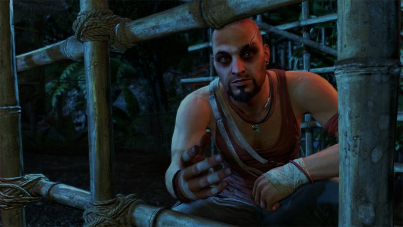 Far Cry 3 Classic Edition 5