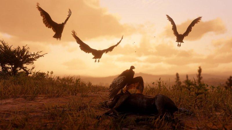 Red Dead Redemption 2 Animali 00003