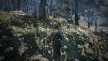 Dragon's Dogma: Dark Arisen - Trailer di annuncio della versione Nintendo Switch