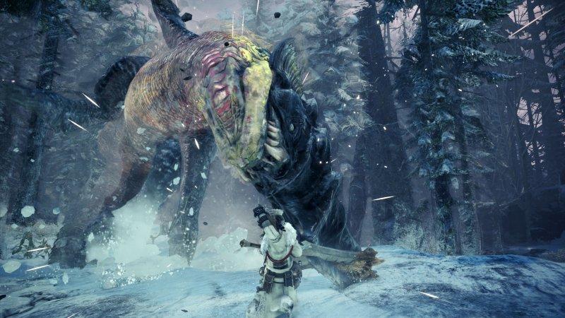 Monster Hunter World Iceborn 6