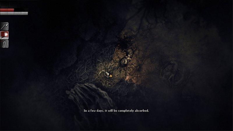Darkwood 6